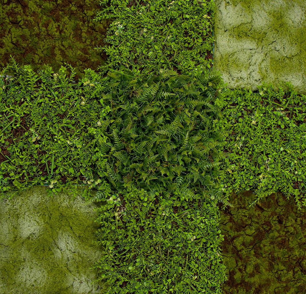 grass-wall-angle-up-01.jpg